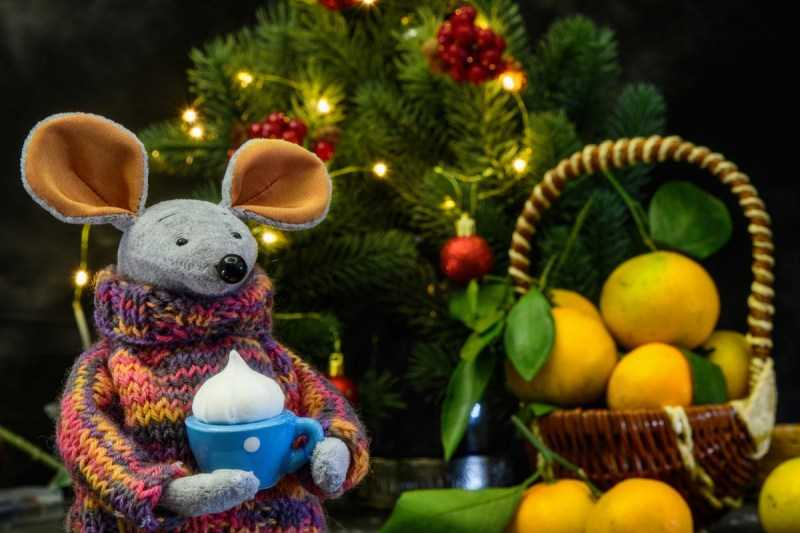 Мышка из фетра: 160 лучших фото поделки мышка из фетра своими руками + простая и быстрая инструкция для начинающих