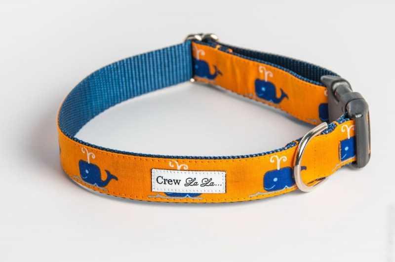 Ошейник для собаки своими руками - лучшие способы создания ошейника своими руками. Поэтапная инструкция для начинающих + 130 фото идей оформления