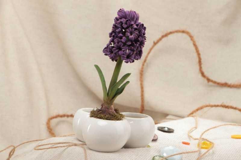 Поделки из полимерной глины - фото креативных решений создания глиняных поделок в домашних условиях + способы работы для начинающих