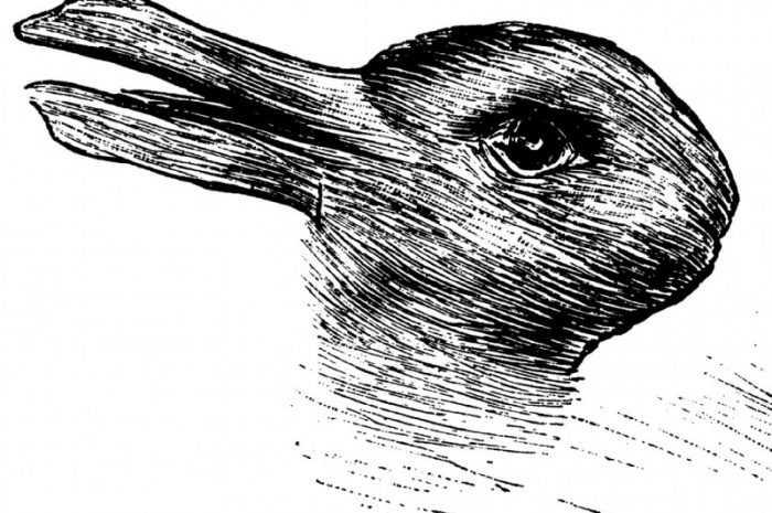 Рисунки карандашом поэтапно: ТОП-150 фото необычных идей рисования карандашом. Поэтапная инструкция создания рисунков своими руками