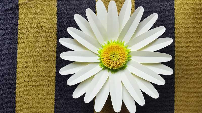 Ромашки из бумаги - ТОП-170 фото лучших поделок. Мастер-класс с пошаговыми схемами и чертежами для создания ромашки своими руками