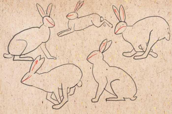 Срисовки: мастер-класс по созданию простых и сложных рисунков своими руками с поэтапными схемами для начинающих + фото-примеры оригинальных работ